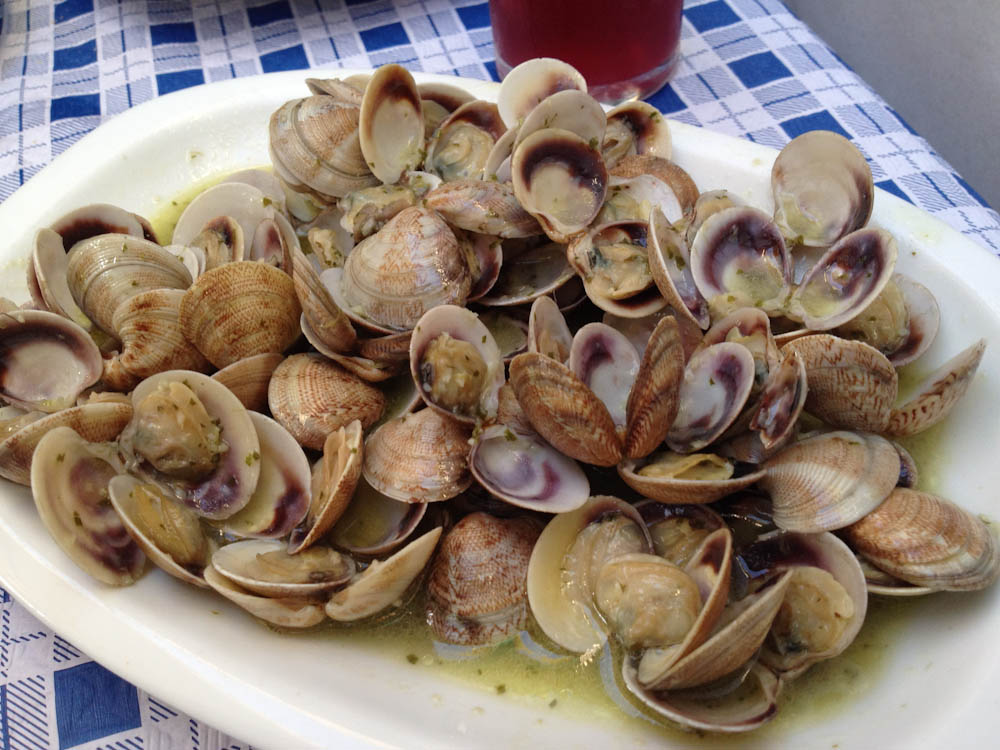 Clams in white wine sauce, Malaga, Spain