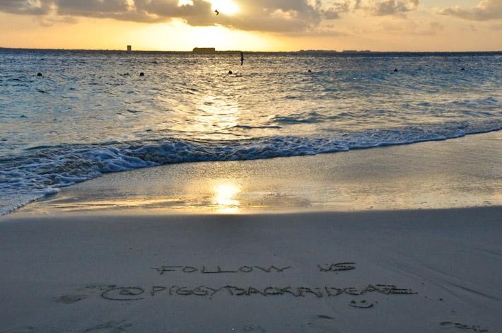 Come travel with A&Z! Follow us @piggybackrideAZ