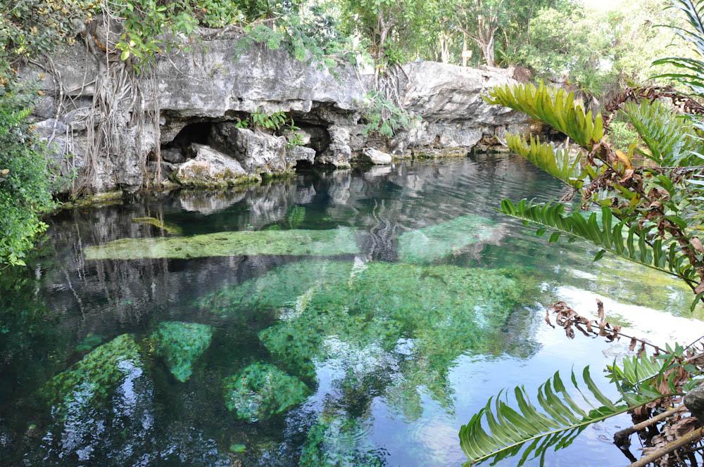 Cenote Cristalino
