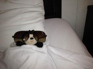 Shehedbee: Poo hangover