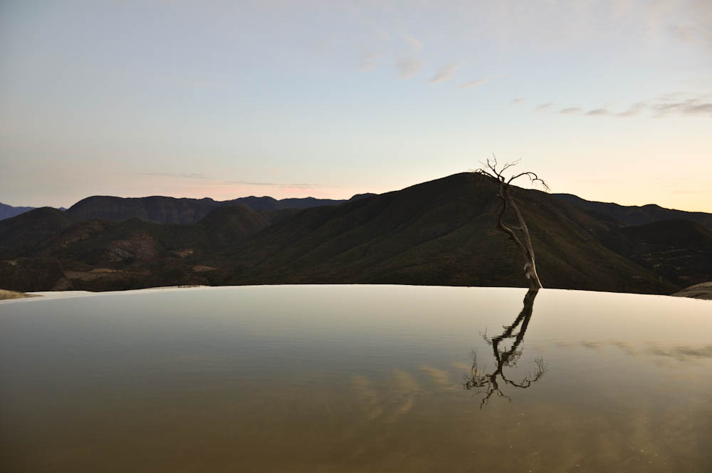 Lonely tree at the edge - Hierbe el Agua