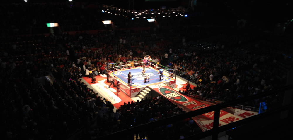 Lucha Libre - fighting Mexican style!