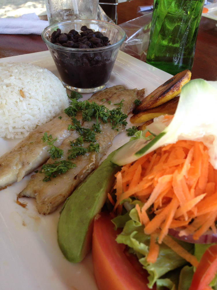 Fish casado in Playa Samara
