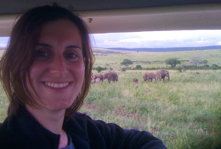Kenya wildlife safari