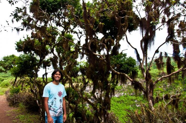 Ashray under the scalesia trees