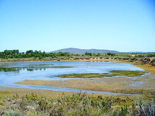 Visit Ria Formosa, Algarve