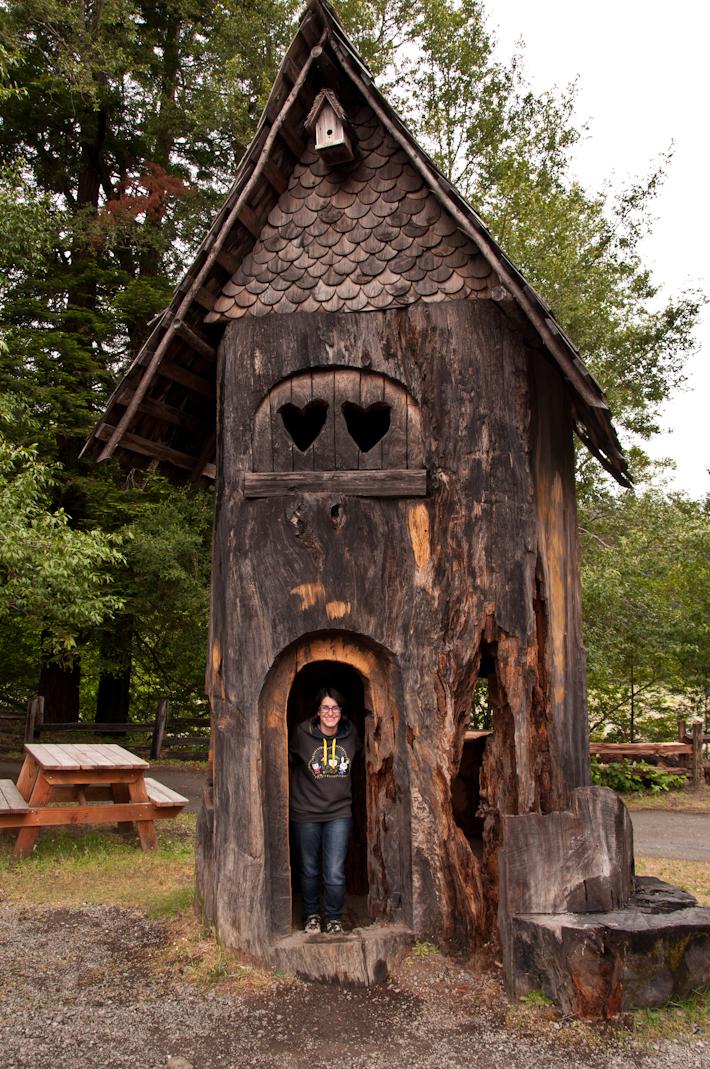 Avenue of Giants tree house