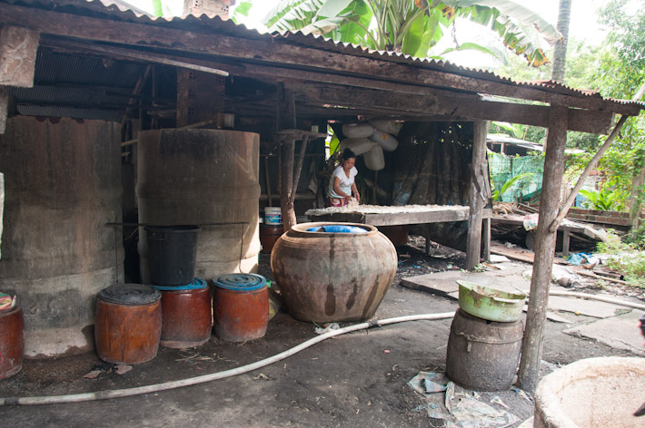 Rice wine making