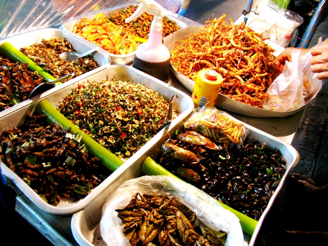If I don't manage to negotiate down the price of these fried insects, I'll go hunt my own!