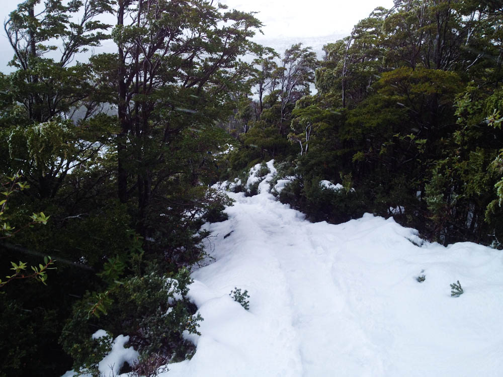 Trekking in Bernardo O'Higgins National Park - the path is snowed-in during winter season.
