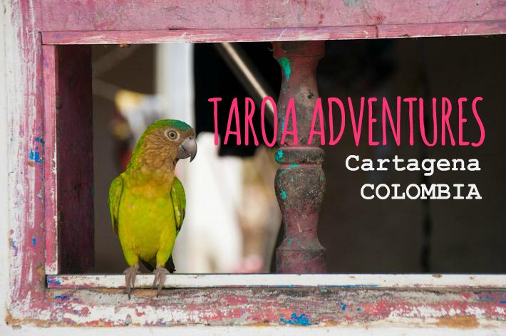 Taroa Adventures: eco-tourism company in Cartagena, Colombia