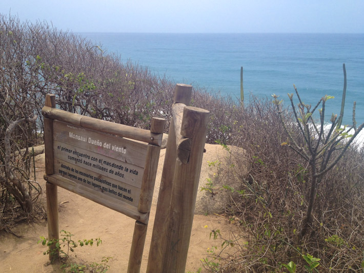 Inside Tayrona park, the path for trekking is well marked and there are viewpoints all along the way