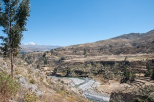 Gazing out over the Colca Valley