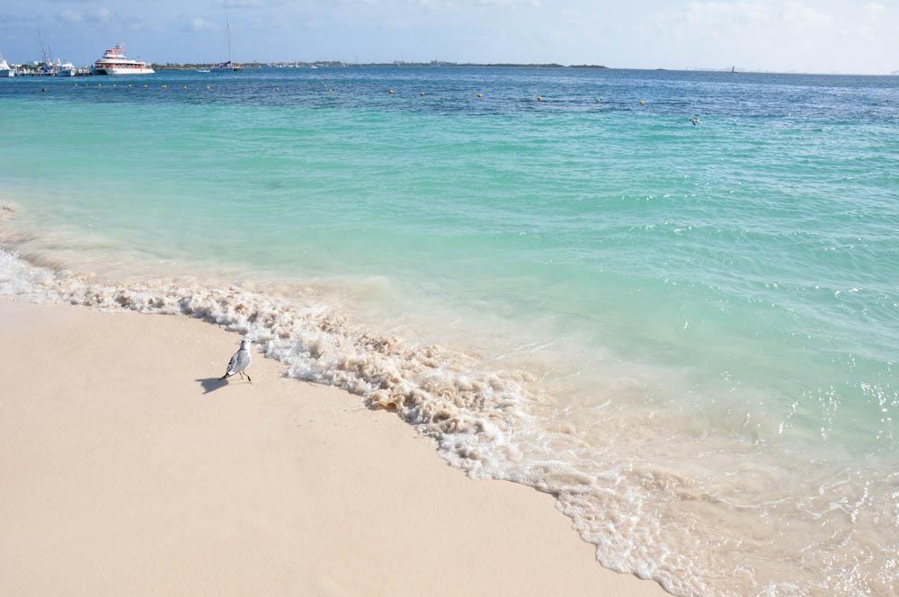 Transparent Caribbean waters