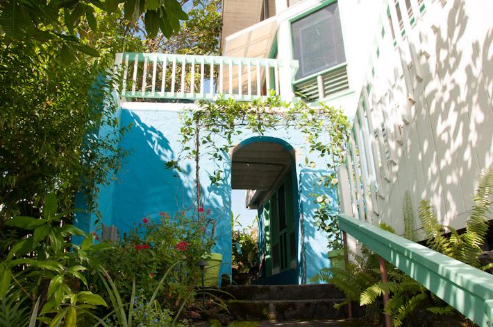 The garden at Hale Kai