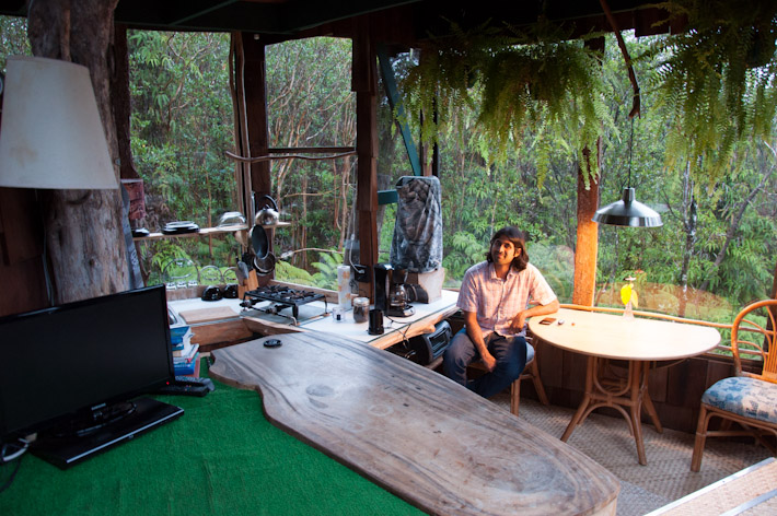 Watch DVDs inside a treehouse? Check!