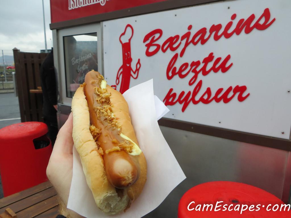 Icelandic lamb hot dog