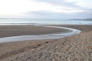 The Black Sands of Drake bay