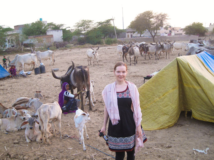 Zaina in Haryana, India
