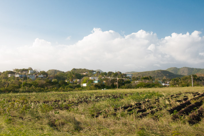 Landscape off the highway in the South of Puerto Rico
