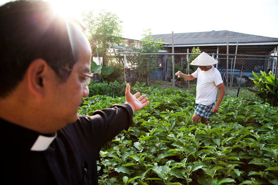 Urban Farming by the Vietnamese Community in New Orleans. Photo Source: http://bit.ly/1pv7Xif