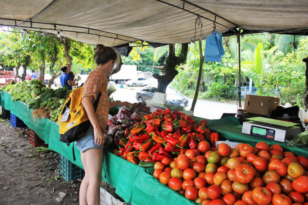 Charlie at a farmers market in Costa Rica