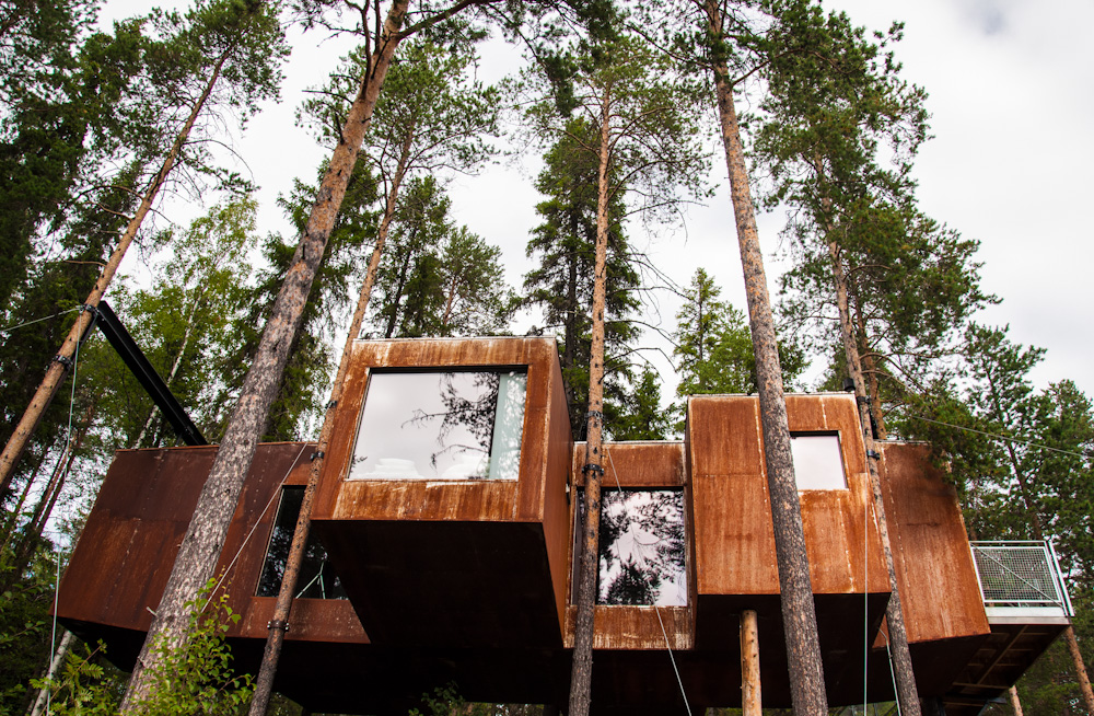 The Dragonfly at Treehotel Sweden