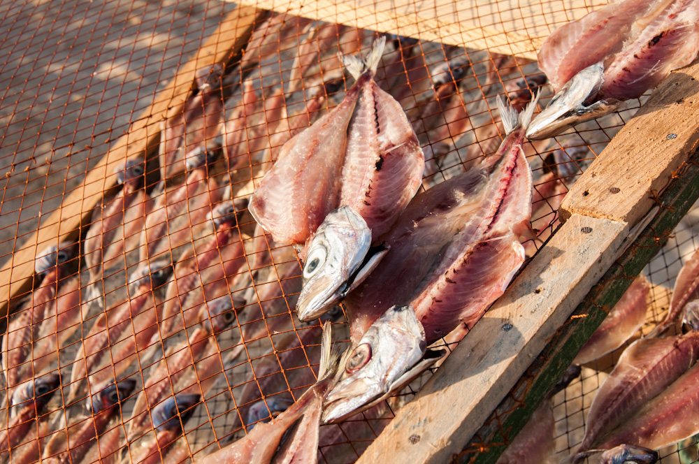 BEFORE: sun-dried fish.